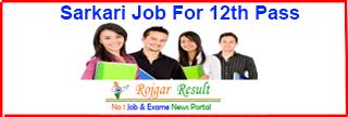 Sarkari Job For 12th Pass | Apply 10th Pass Govt Job 2021