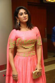 Actress Deepthi Pictures at Jaguar Movie Audio Launch  0106.JPG