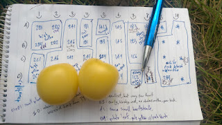 Two large cherry sized, blocky, white tomatoes. They're sitting on a notebook with a sketched map of the garden, showing where all the plants are and which plants were grown from the same batches of seed. There is a blue pen pointing at the specific plant which produced the fruit.