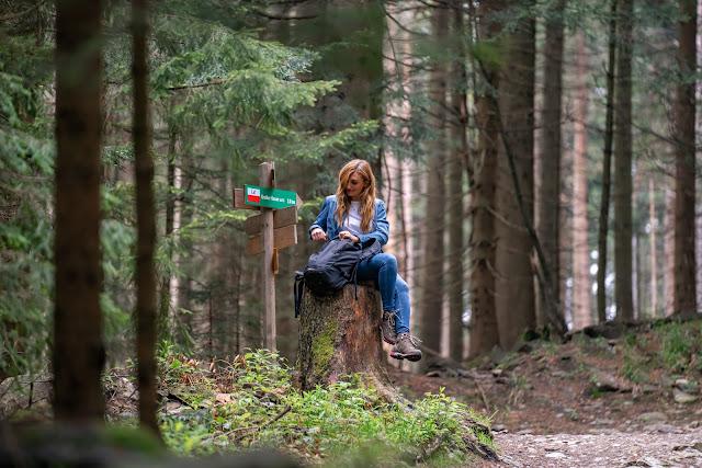 Künischer Grenzweg auf den Osser | Wanderweg La1 im Lamer Winkel | Wandern im Bayerischen Wald | Naturpark Oberer Bayerischer Wald 02
