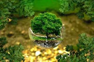 Tujuan dan Manfaat Konservasi Tanah