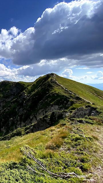 Hills Nature Wallpaper
