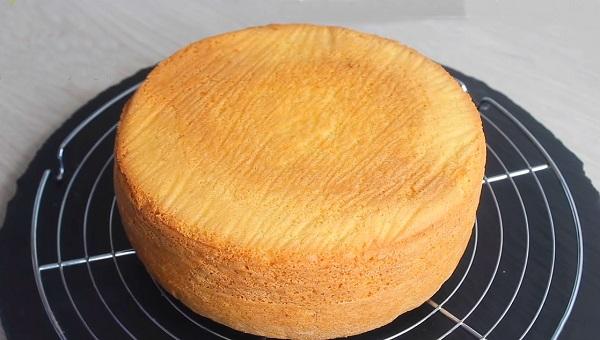 How to make a crisp squishy cake