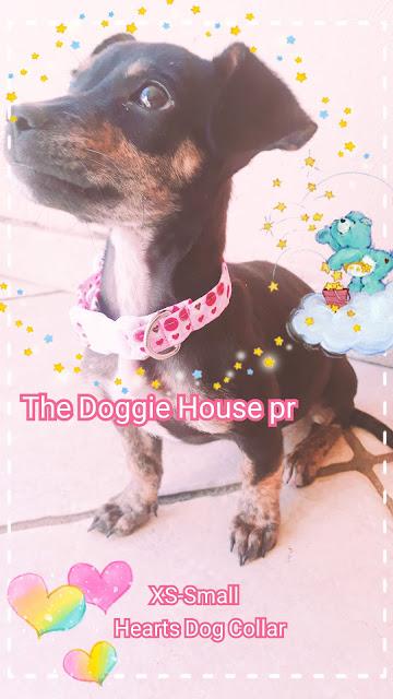 https://thedoggiehousepr.blogspot.com/