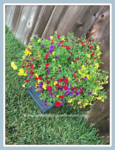 Front -Yard -Garden-Hanging-Basket-Project-From My Front Porch To Yours