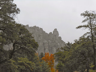 view from road in chiricahua national monument