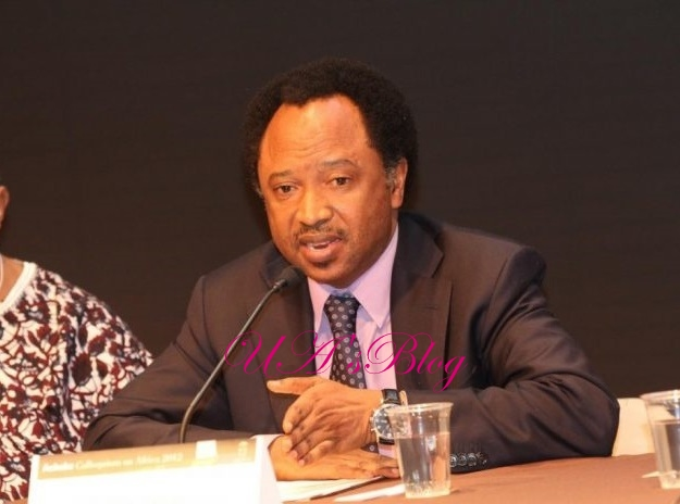 Alleged $24,000 extortion: Shehu Sani shuns lie detector test