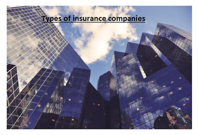 types of insurance companies in usa