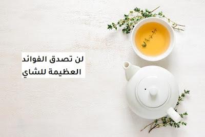 فوائد الشاي الأخضر المجفف