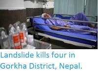 https://sciencythoughts.blogspot.com/2016/09/landslide-kills-four-in-gorkha-district.html