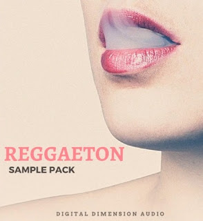 Download Digital Dimension Audio Reggaeton Pro Sample Pack WAV