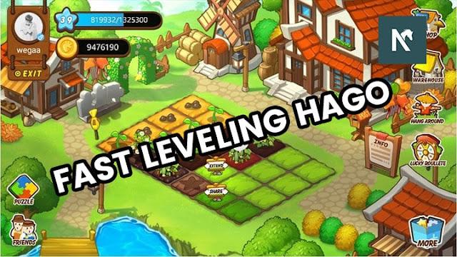 Panduan Bermain HAGO Farm