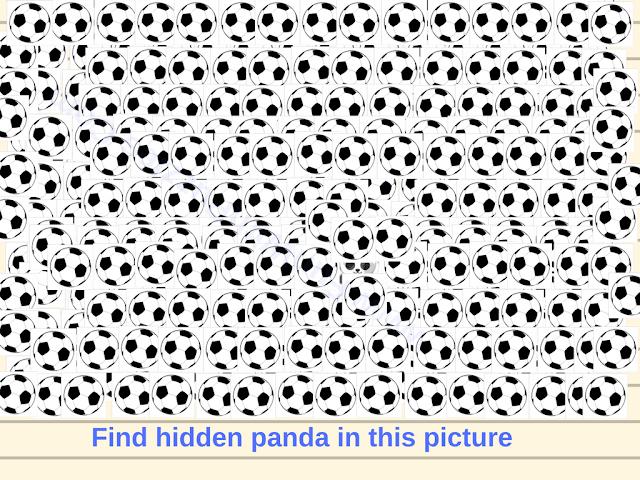 Hidden Panda Face Picture Puzzle