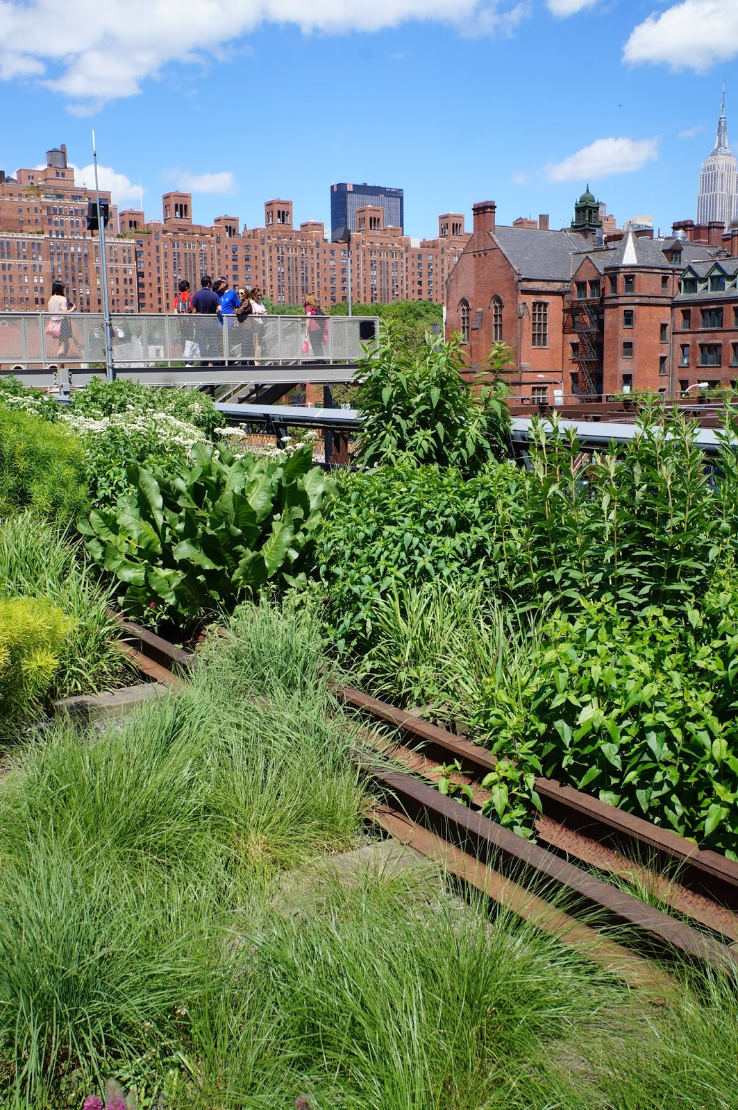 highline park, empire state building, train tracks, chelsea, fauna, natural plants, hipster, NYC, New York, 10 free things to do, free things to do in NYC, travel, New York, explore, adventures, photography, usa, tourism, tourists,