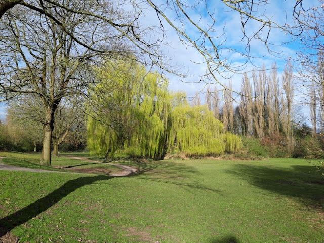 Image shows an open landscape area with trees and a large willow tree in the centre