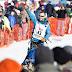 Larry Daugherty to run Iditarod 46