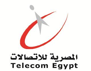 موقع معرفة فاتورة التليفون المنزلى الأرضى المصرية للإتصالات