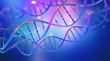 """As """"vacinas"""" de mRNA é como um """"sistema operacional"""" para modificar humanos e hackear suas funções biológicas"""