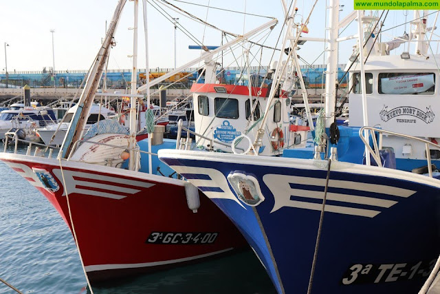 El Gobierno canario destinará 4,3 millones del FEMP a paliar los efectos de la Covid-19 en el sector pesquero y acuícola