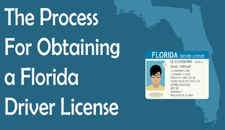 The Process For Obtaining a Florida Driver License #infographic