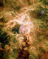 Supernova Remnant NGC 2060