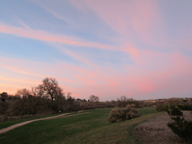 """Larry"" Moore Park in Paso Robles: A Photographic Review - Pink Contrails"