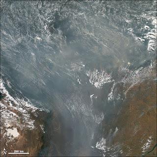 Los científicos temen que se haya roto un punto de inflexión en el que el Amazonas ya no podrá absorber y almacenar carbono.   el Amazonas absorbe dióxido de carbono y devuelve oxígeno al aire.