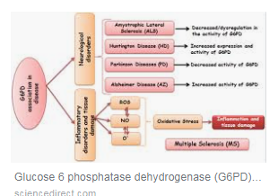 Glucose 6 phosphatase dehydrogenase (G6PD) and neurodegenerative