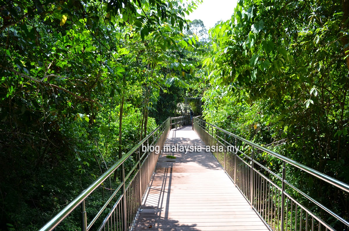 Bornean Sun Bear Conservation Centre Walkway