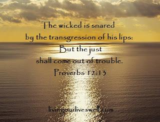 Proverbs 12:13