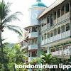 Hotel dekat pantai carita anyer | kondominium lippo carita