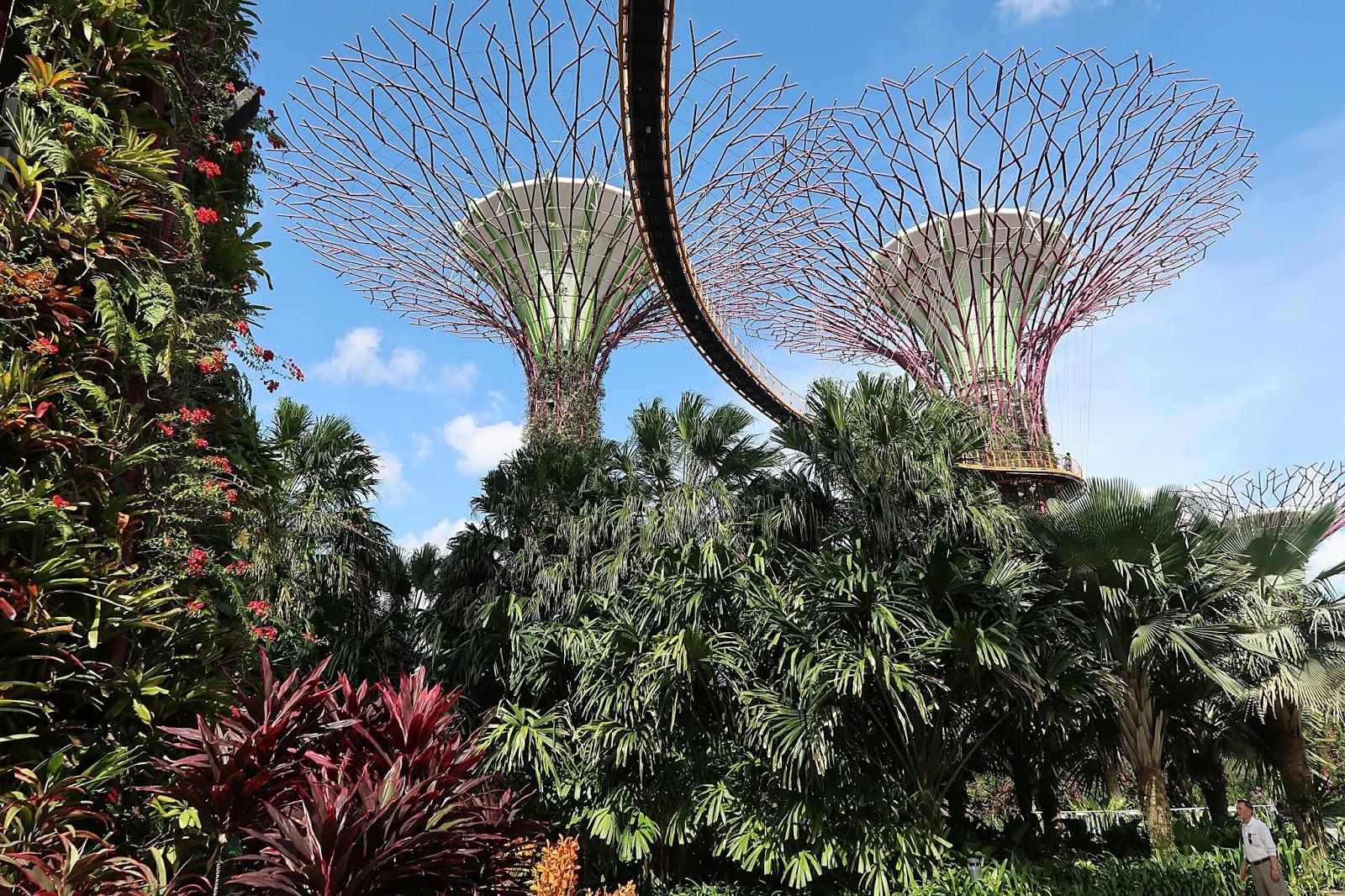 co zobaczyc w singapurze