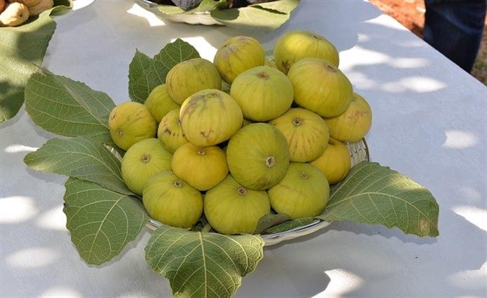sarı incir sarı kabuklu meyveler