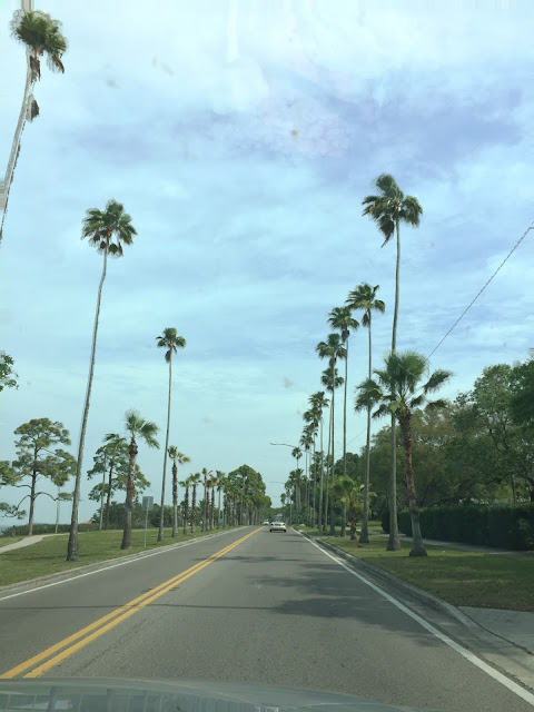 Florida Highway 19