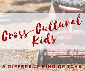Cross Cultural Kids or Third Culture Kids