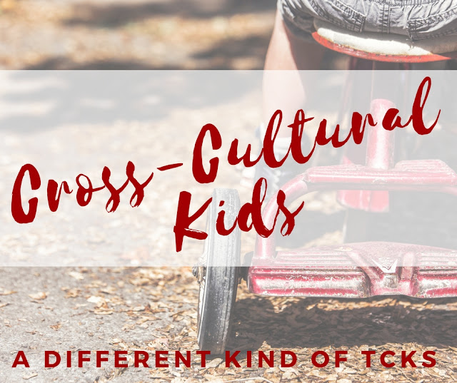 Cross Cultural Kids or Third Culture Kids