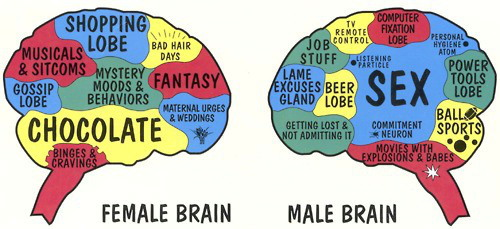 Sexual Interaction Between Male And Female