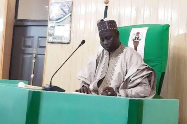 Kano State House of Assembly Speaker, majority leader resign