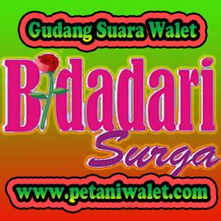 Download Suara Panggil Bidadari Surga