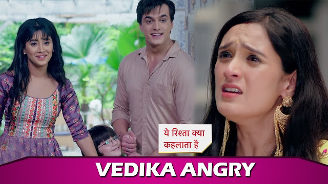 Big Trouble : Kartik Naira's bitter fight Vedika adds poison in Yeh Rishta Kya Kehlata Hai
