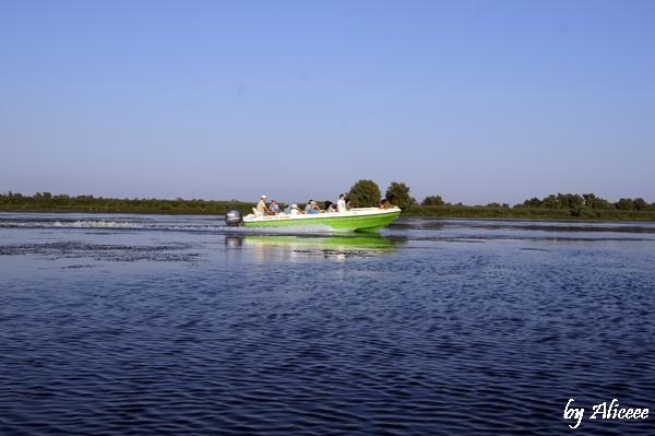 excursie-pe-canale-cu-descopera-delta-dunarii
