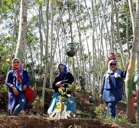 Pohon-pohon dengan hiasan topeng di Kampung Topeng