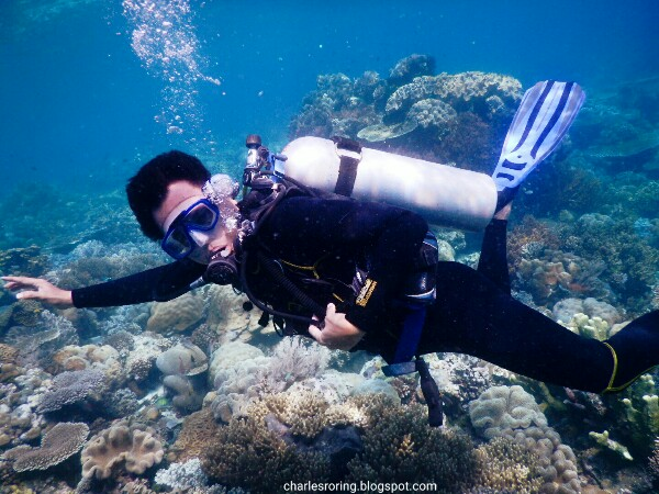 Underwater marine reef in Mioskon island