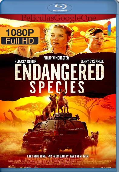 Especies En Peligro De Extinción (2021) [BRRip 1080P] [Latino-Ingles] [Google Drive]