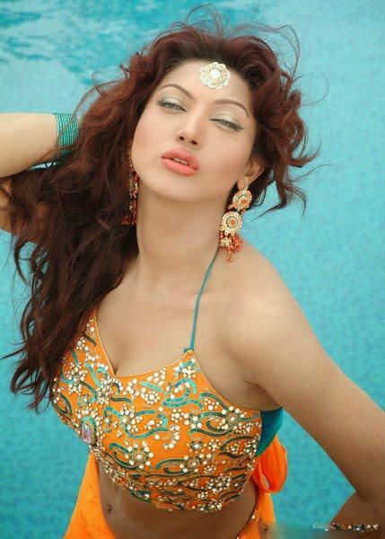Online Punjabi Sex Video