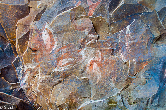 Pinturas rupestres de pajaros en Ana Kai Tangata