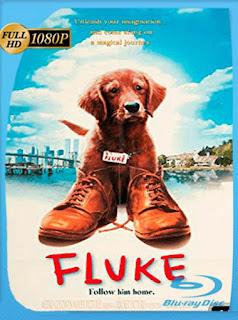 Fluke [1995] HD [1080p] Latino [GoogleDrive] SilvestreHD