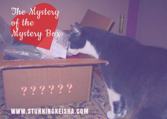 The Mystery of the Mystery Box