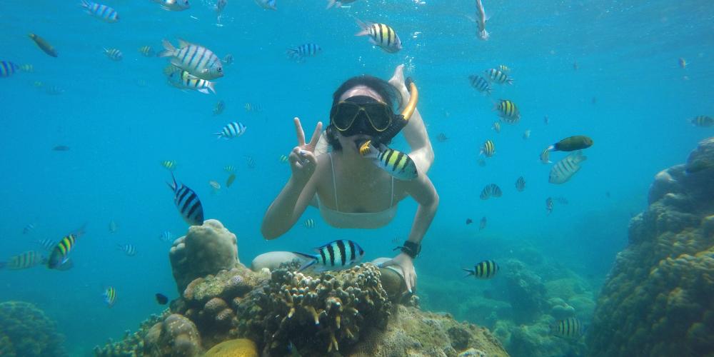 pulau tongkeng di pulau kelapa