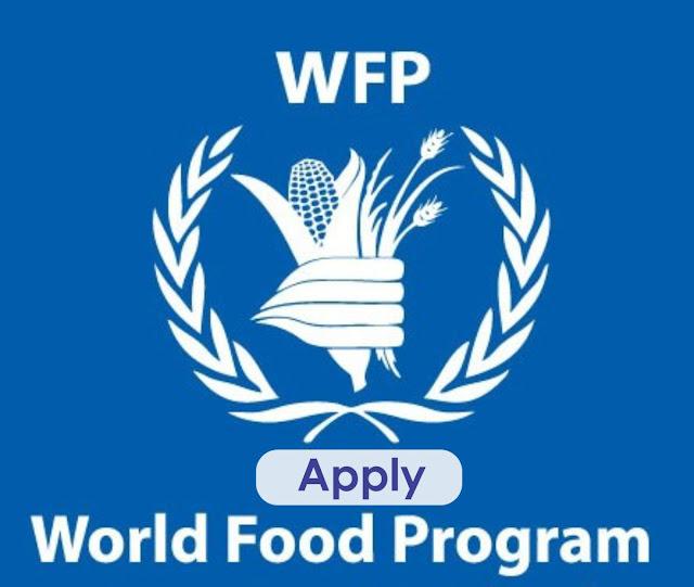 WFP jobs